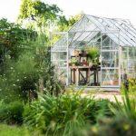 Zwalczanie szkodników i insektów w ogrodzie